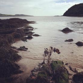 HOUND BEACH